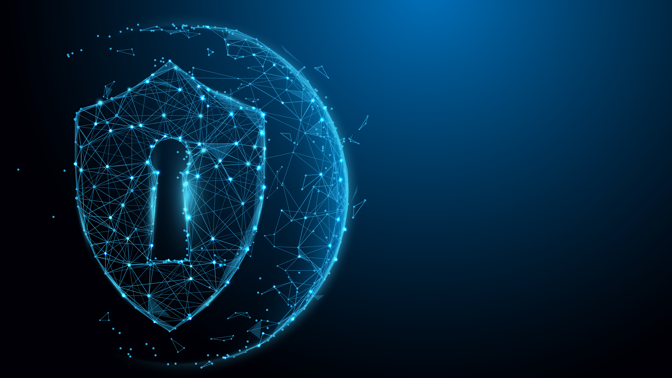 Important Cybersecurity Advisory
